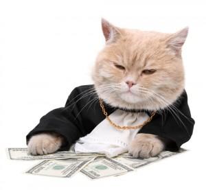 Pisica Banilor
